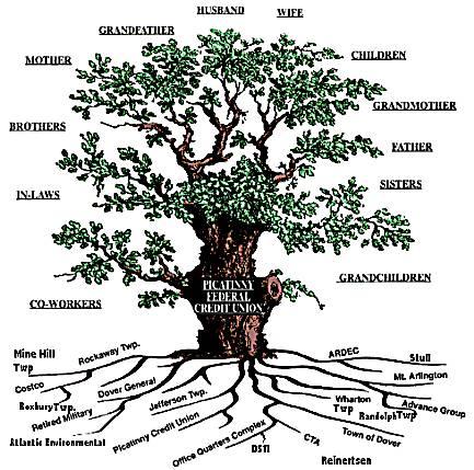 drzewo genealogiczne